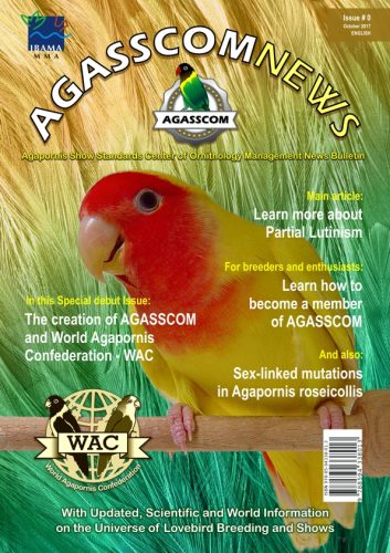 AGASSCOM News #0 (English)
